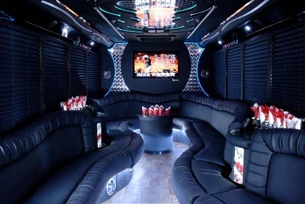 18 people East Aurora party bus interior