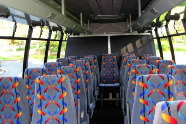 20 person mini bus rental Geneseo